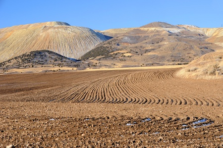 tailings: Farming or Mine Reclamation