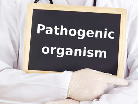 Doctor shows information: pathogenic organism Stock Photo - 15865071