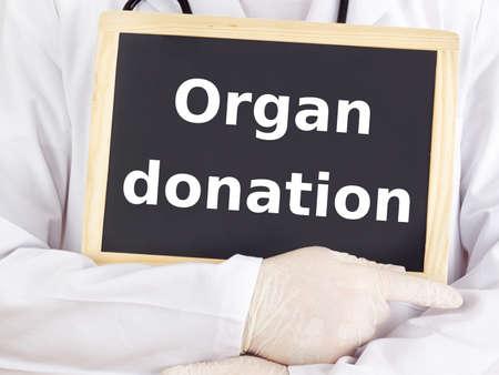 organ donation: Doctor shows information: organ donation Stock Photo
