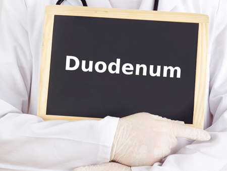 duodenum: Doctor shows information on blackboard: duodenum Stock Photo