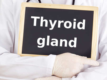 Doctor shows information on blackboard: thyroid gland Stock Photo