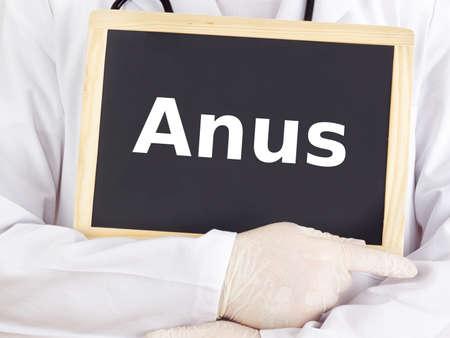 anus: Doctor shows information on blackboard: anus