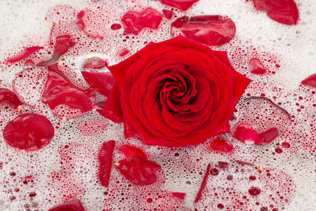 spoiling: Bath water with rose petals Stock Photo