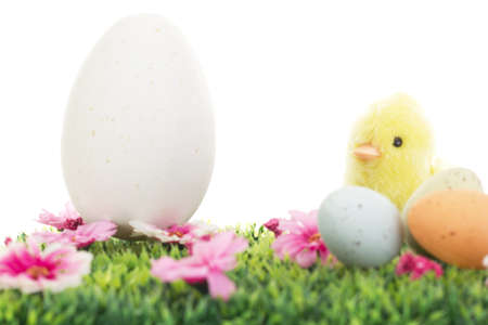 Chick on grass with flowers and easter eggs photo