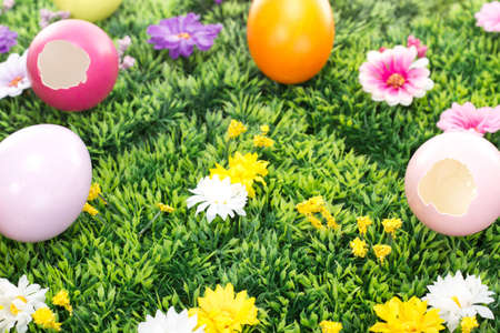 easter egg hunt: Have you seen the Easter bunny?
