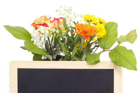 vernal: Beautiful vernal flowers behind blank blackboard