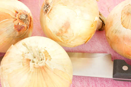 Four onions waiting to be cutted photo