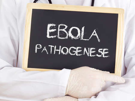 pathogenesis: Doctor shows information: Ebola pathogenesis in german