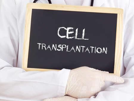 transplantation: Doktor zeigt Informationen: Zelltransplantation