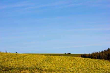 Agricultural land in spring Standard-Bild