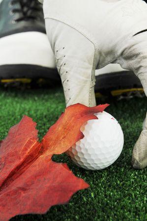 picking golf ball