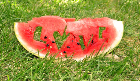 Fresh juicy watermelon slice photo