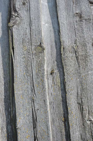 dingy: Old fence from dingy planks. Abstract background.