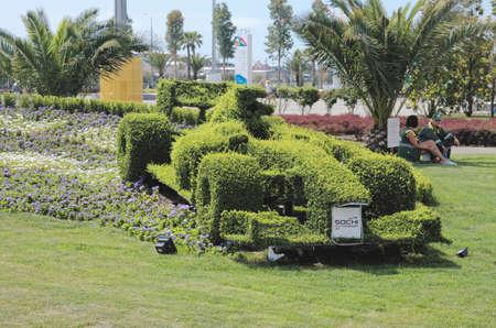 f1: SOCHI, RUSSIA - JUNE 12, 2015: topiary F1 bolide in the Sochi Autodrom, on June 12 2015. Editorial