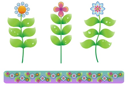Flower Set with Border Stock Vector - 11438653