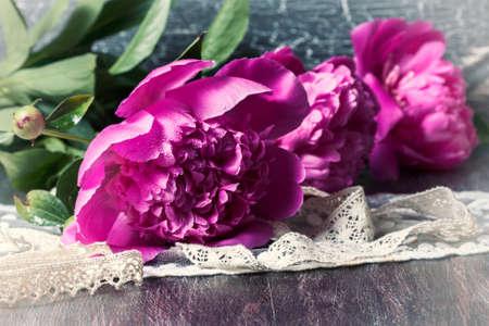 tonal: Pink peonies with drops of water. Tonal processing. Selective focus Stock Photo
