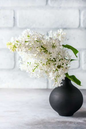 Bouquet of a white lilac on a concrete background. Selective focus