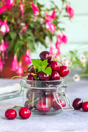 cultivate: Group of Fresh Juicy Sweet Cherries in a Glass Jar. Natural Organic Food. Selective focus