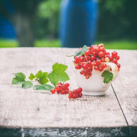 raw: Juicy berries of raw red currant in a cup on a wooden white table. Selective focus. Natural light. Concept of healthy food Stock Photo