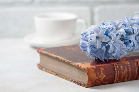 Vintage antique book and hyacinth on light background. The concept of nostalgia and memories. Selective focus