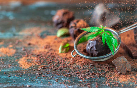 Delicious chocolate truffles with cannabis herb, cocoa powder and dark chocolate on a dark wooden background. Imagens