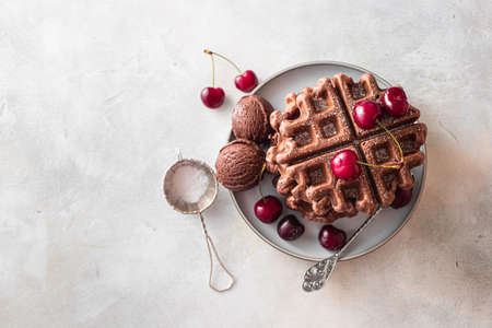 Homemade chocolate waffles with berries and chocolate ice cream. Delicious dessert or breakfast. Close-up