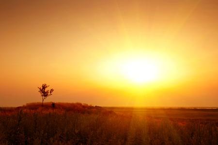 boundless: The endless prairie, the evening sunset, a golden.