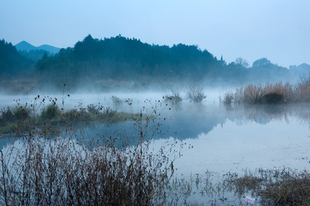 fish silhouette: Winter morning, a mist on the lake