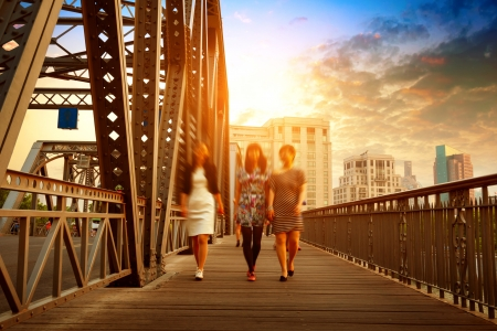 Shanghai old iron bridge and pedestrian walks photo