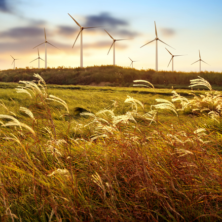 power in nature turbine: Stretch as far as eye can see the grass and the horizon distance, wind turbine. Stock Photo