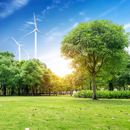 power in nature turbine: green meadow with Wind turbines generating electricity