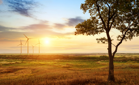 sustainability: Stretch as far as eye can see the grass and the horizon distance, wind turbine. Stock Photo