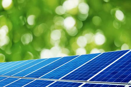 paneles solares: Los paneles solares bajo el fondo �rboles Foto de archivo