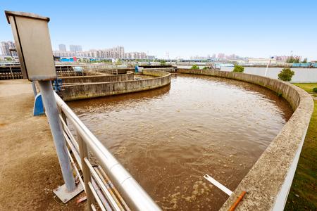 effluent: Sewage treatment plant effluent treatment pond.