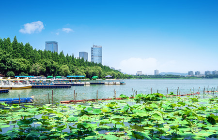 Xuanwu Lake Financial District at Nanjing, China. Stok Fotoğraf