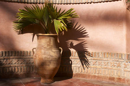 Garden urn with palm leaves Stock Photo