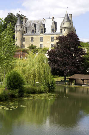 riverside trees: Chateau montresor, loire valley, france