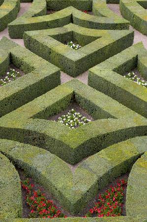 hedging: Formal gardens at chateau, de, villandry, loire, valley, france
