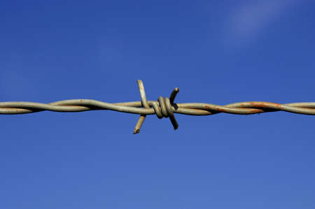 Detail of barbed wire fence against a blue sky with space for text Stock Photo - 239738