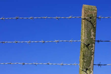 fencing wire: Barbed wire fence against blue sky