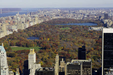 View of central park from the roof of the rockefeller building, manhattan, new york, america, usa