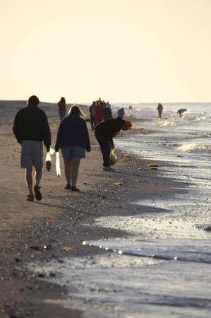 shelling: Early morning avid shell hunters looking for freshly washed up sea shells near bowmans beach famous for the abundance of shells on Sanibel Island Florida America united states taken in march 2006 Stock Photo