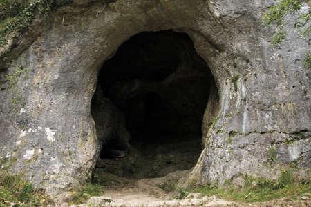 cueva: paloma en los agujeros de la paloma en el valle de Peak District dovedale parque nacional Derbyshire Inglaterra Reino Unido