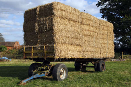 straw hay bales on a trailer in a field meriden solihull west midlands england uk Stock Photo