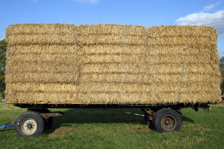 straw hay bales on a trailer in a field meriden solihull west midlands england uk Stock Photo - 1932686