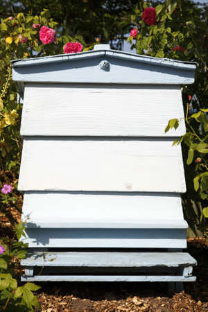 single blue painted beehive in an english garden