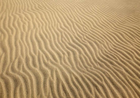 patterns left by the wind on a sand dune maspalomas gran canaria Stock Photo