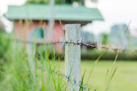 invade: Rusty Barbed wire fence selective focus with blur overgrown grass and orange house background; countryside