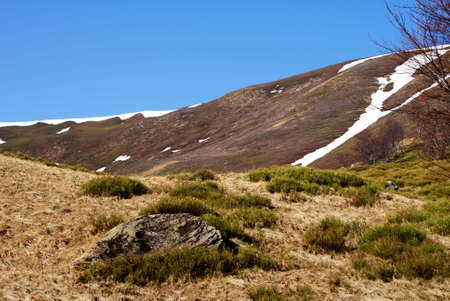 uplands: spring landscape  mountain Stock Photo