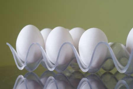 White chicken eggs in a plastic tray